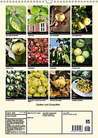 Quitten und Zierquitten (Wandkalender 2019 DIN A3 hoch) - Produktdetailbild 13