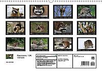 Raccoons / UK-Version (Wall Calendar 2019 DIN A3 Landscape) - Produktdetailbild 13