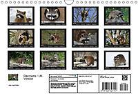 Raccoons / UK-Version (Wall Calendar 2019 DIN A4 Landscape) - Produktdetailbild 13