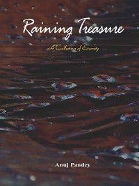 Raining Treasure, Anuj Pandey