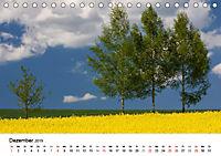 Rapsodie (Tischkalender 2019 DIN A5 quer) - Produktdetailbild 12