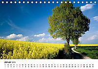 Rapsodie (Tischkalender 2019 DIN A5 quer) - Produktdetailbild 1