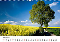 Rapsodie (Wandkalender 2019 DIN A3 quer) - Produktdetailbild 1