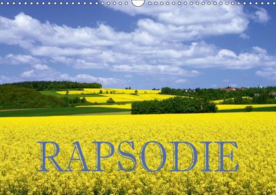 Rapsodie (Wandkalender 2019 DIN A3 quer), Hans Pfleger