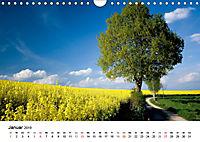 Rapsodie (Wandkalender 2019 DIN A4 quer) - Produktdetailbild 1