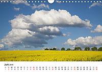 Rapsodie (Wandkalender 2019 DIN A4 quer) - Produktdetailbild 6