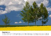 Rapsodie (Wandkalender 2019 DIN A4 quer) - Produktdetailbild 12