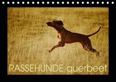 RASSEHUNDE querbeet (Tischkalender 2019 DIN A5 quer), Kathrin Köntopp
