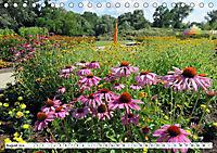 Rathenow - Grüne Stadt an der Havel (Tischkalender 2019 DIN A5 quer) - Produktdetailbild 8