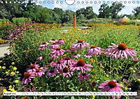 Rathenow - Grüne Stadt an der Havel (Wandkalender 2019 DIN A4 quer) - Produktdetailbild 8