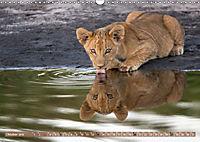 Raubkatzenkinder (Wandkalender 2019 DIN A3 quer) - Produktdetailbild 10