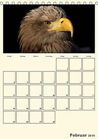 Raubvögel (Tischkalender 2019 DIN A5 hoch) - Produktdetailbild 2