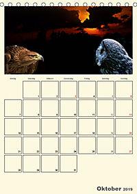 Raubvögel (Tischkalender 2019 DIN A5 hoch) - Produktdetailbild 10