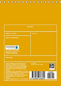 Raubvögel (Tischkalender 2019 DIN A5 hoch) - Produktdetailbild 13