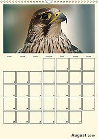 Raubvögel (Wandkalender 2019 DIN A3 hoch) - Produktdetailbild 8