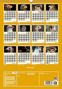 Raubvögel (Wandkalender 2019 DIN A3 hoch) - Produktdetailbild 13