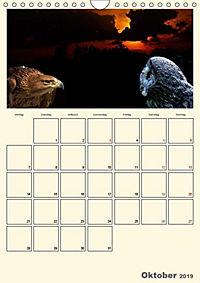 Raubvögel (Wandkalender 2019 DIN A4 hoch) - Produktdetailbild 10