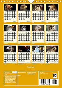 Raubvögel (Wandkalender 2019 DIN A4 hoch) - Produktdetailbild 13