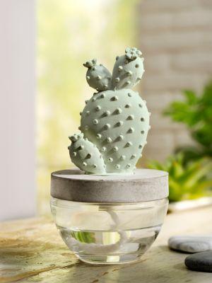 Raumduft Kaktus, 100ml