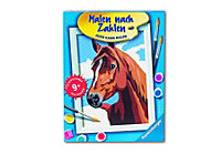 "Ravensburger - Malen nach Zahlen ""Stolzes Pferd"" - Produktdetailbild 1"