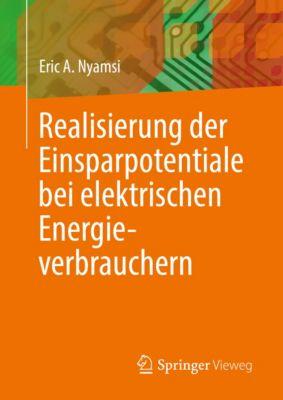 Realisierung der Einsparpotentiale bei elektrischen Energieverbrauchern, Eric A. Nyamsi