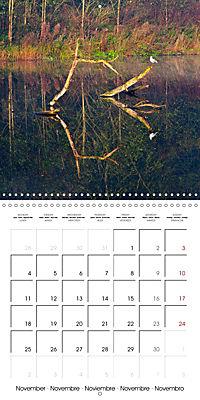 Reflections on the River Weaver (Wall Calendar 2019 300 × 300 mm Square) - Produktdetailbild 11