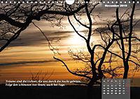Reflexionen in zwölf Texten und Bildern (Wandkalender 2019 DIN A4 quer) - Produktdetailbild 11