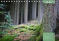 Reflexionen in zwölf Texten und Bildern (Tischkalender 2019 DIN A5 quer) - Produktdetailbild 3