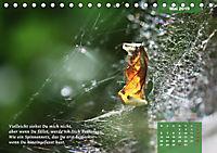 Reflexionen in zwölf Texten und Bildern (Tischkalender 2019 DIN A5 quer) - Produktdetailbild 5
