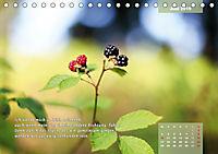 Reflexionen in zwölf Texten und Bildern (Tischkalender 2019 DIN A5 quer) - Produktdetailbild 6