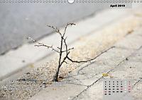 Reflexionen in zwölf Texten und Bildern (Wandkalender 2019 DIN A3 quer) - Produktdetailbild 4