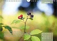 Reflexionen in zwölf Texten und Bildern (Wandkalender 2019 DIN A4 quer) - Produktdetailbild 6