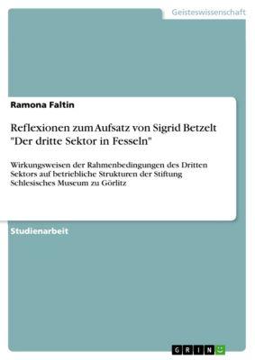 Reflexionen zum Aufsatz von Sigrid Betzelt Der dritte Sektor in Fesseln, Ramona Faltin