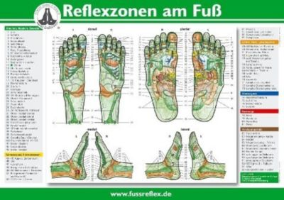 Reflexzonen der Füße, Poster, Hanne Marquardt