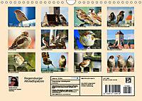 Regensburger Altstadtspatzen (Wandkalender 2019 DIN A4 quer) - Produktdetailbild 13