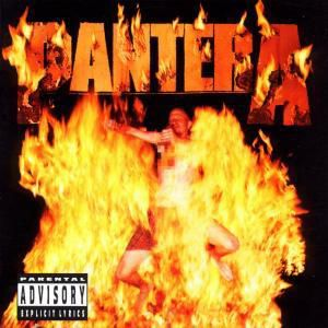 Reinventing The Steel, Pantera