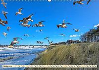 Reise durch Deutschland - Mecklenburg-Vorpommern (Wandkalender 2019 DIN A2 quer) - Produktdetailbild 10