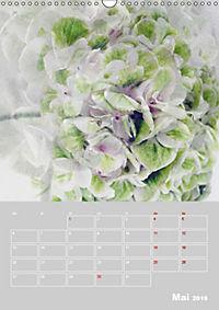 Renaissance der Hortensie (Wandkalender 2019 DIN A3 hoch) - Produktdetailbild 5