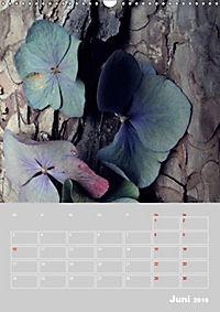 Renaissance der Hortensie (Wandkalender 2019 DIN A3 hoch) - Produktdetailbild 6