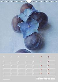 Renaissance der Hortensie (Wandkalender 2019 DIN A4 hoch) - Produktdetailbild 9