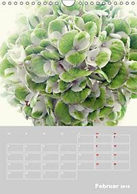 Renaissance der Hortensie (Wandkalender 2019 DIN A4 hoch) - Produktdetailbild 2
