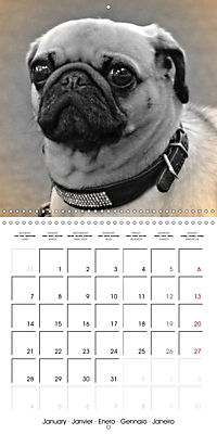 Retro Dogs (Wall Calendar 2019 300 × 300 mm Square) - Produktdetailbild 1