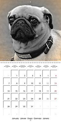 Retro Dogs (Wall Calendar 2019 300 × 300 mm Square) - Produktdetailbild 1
