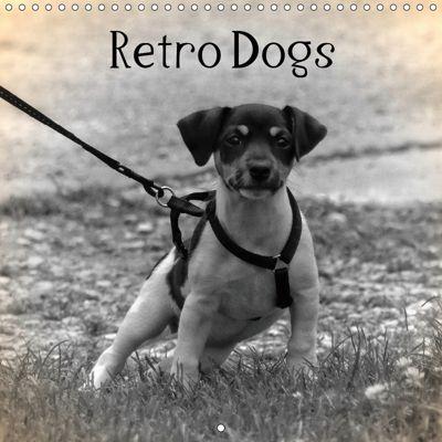 Retro Dogs (Wall Calendar 2019 300 × 300 mm Square), kattobello