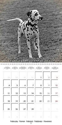 Retro Dogs (Wall Calendar 2019 300 × 300 mm Square) - Produktdetailbild 2