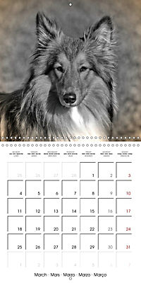 Retro Dogs (Wall Calendar 2019 300 × 300 mm Square) - Produktdetailbild 3