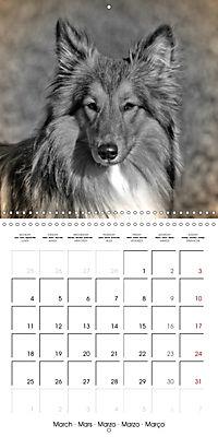 Retro Dogs (Wall Calendar 2019 300 × 300 mm Square) - Produktdetailbild 3