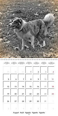 Retro Dogs (Wall Calendar 2019 300 × 300 mm Square) - Produktdetailbild 8