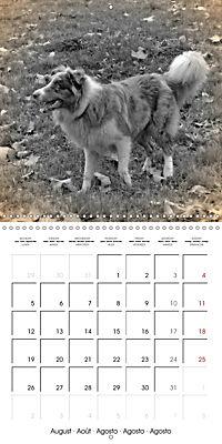 Retro Dogs (Wall Calendar 2019 300 × 300 mm Square) - Produktdetailbild 8