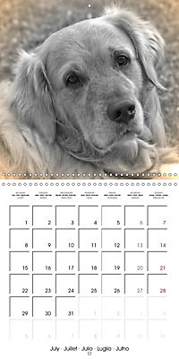 Retro Dogs (Wall Calendar 2019 300 × 300 mm Square) - Produktdetailbild 7